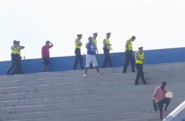 Матч чемпионата Эквадора был прерван из-за атаки пчел