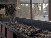 ДТЭК Ахметова остановил добычу угля на Донбассе