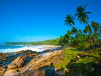 Чем интересна Шри-Ланка?