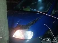 В Днепре водитель врезался в дерево, убегая от полиции