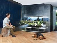 Что нужно знать при выборе большого телевизора