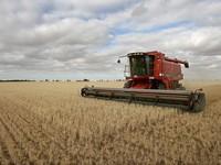 Украинский агробизнес возлагает большие надежды на дружбу Украины с ЕС