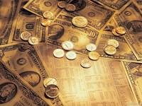 Что такое целевой валютный аукцион?