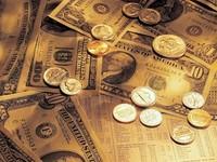 Нацбанк проведет валютный аукцион по продаже евро 24 апреля 2009 года