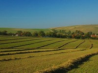 Продажу земли сельхозназначения перенесли