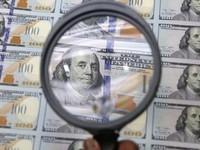 Как импортеры покупают валюту