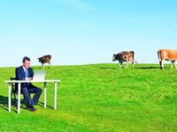 Деньги – на низком старте: чем и как помочь украинскому агробизнесу
