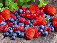 Производство ягод как бизнес-кейс