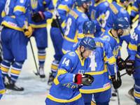 Стал известен состав сборной Украины по хоккею на ЧМ