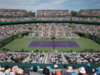 Организаторы турнира в Майами раздали уайлд кард