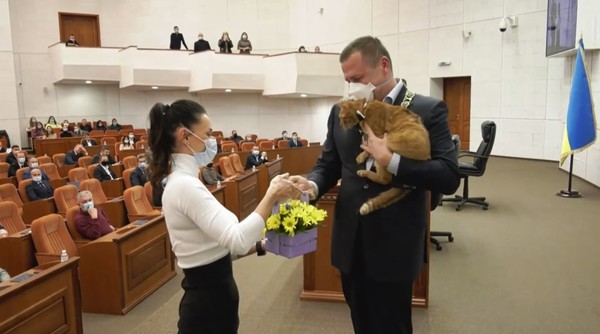 Мэра поздравил рыжий кот