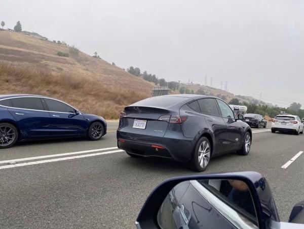 Купить Tesla Model Y можно будет по цене от 39 тыс. долларов