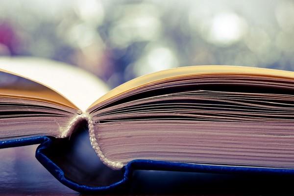 Цель такого ресурса - популяризировать чтение