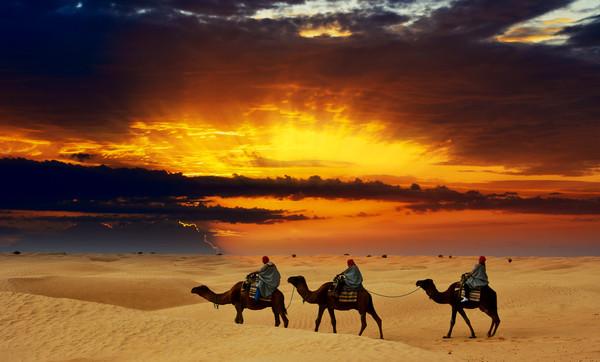 Сахара - крупнейшая жаркая пустыня на Земле
