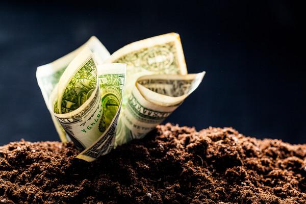 Валютный рынок должен вскоре стабилизироваться
