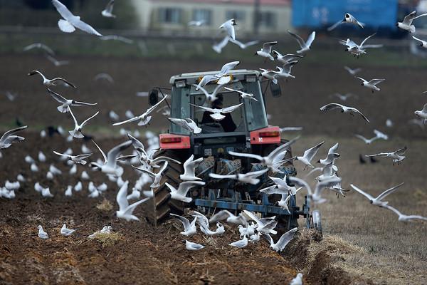 Украинские фермеры в этом году будут вынуждены заплатить больше