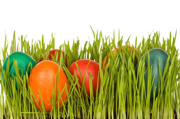 Чем покрасить яйца если нет красок для яиц