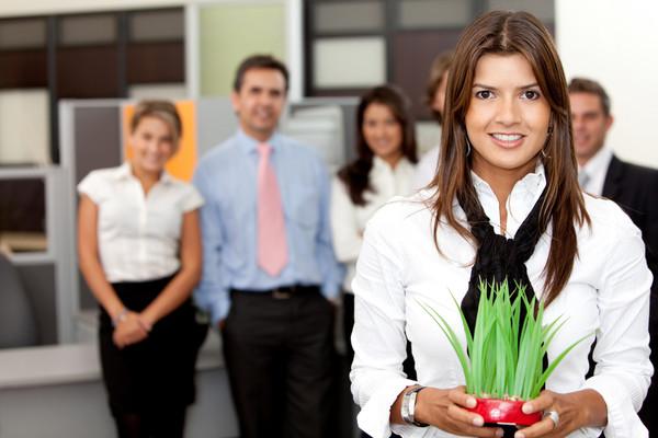 Комнатные растения очищают воздух в офисе, повышают работоспособность и защищают наше здоровье