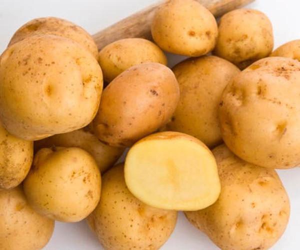 Картофель стоит 500 евро за кг