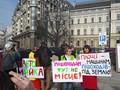 Активисты подсчитали, что можно сделать на деньги паркинга на Михайловской
