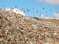 Депутаты хотят ввести налог на мусор
