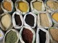 Украина установила рекорд в экспорте зерновых