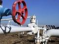 Вырастет ли цена на газ после отставки Азарова?