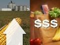 США призывают остановить продовольственный кризис
