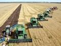Украинский агрохолдинг получил транш кредита на пять млн долл