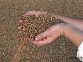 Банкиры готовы кредитовать мелких аграриев