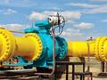 ЕС и Украина проведут консультации по доступу Газпрома к OPAL