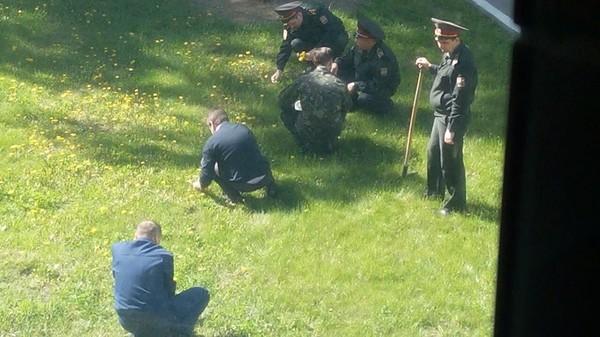 Офицеры рвут одуванчики на газоне Национального университета обороны