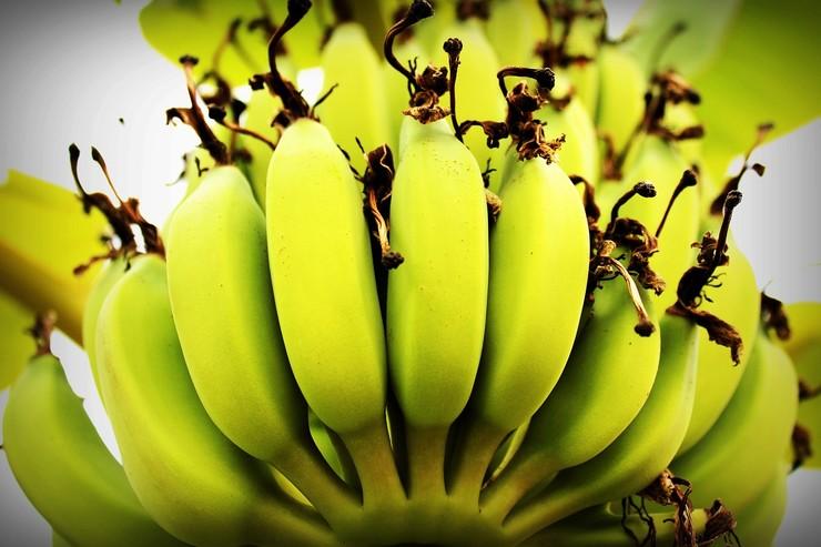 6 причин начать есть бананы каждый день