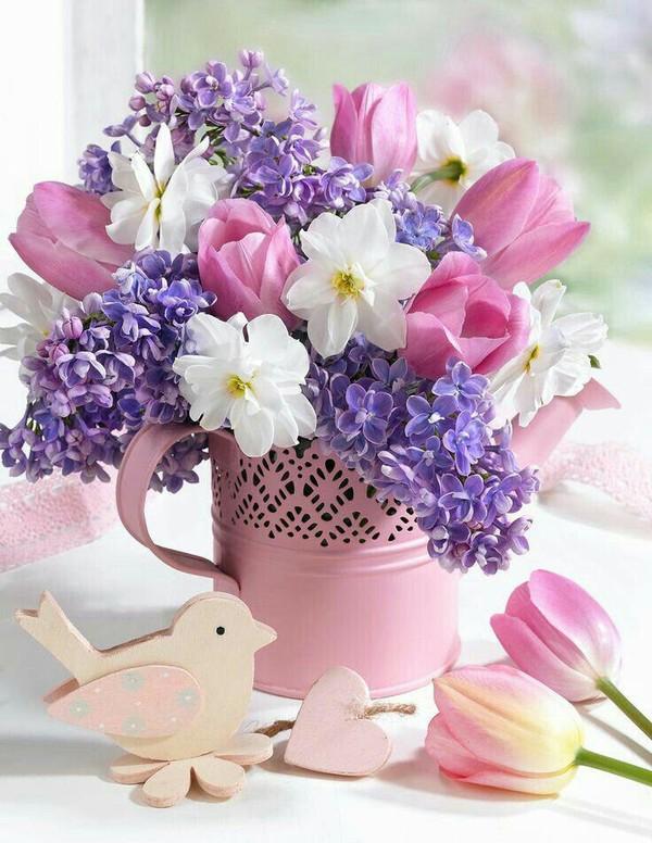 Цветы-талисманы по знаку Зодиака - Досуг - IVONA bigmir)net